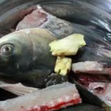 豆腐鱼头汤做法,豆腐鱼头汤怎么去腥