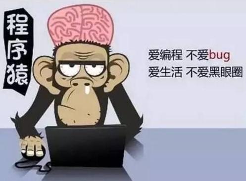 给正在学习编程的小可爱们一点心得-李大大个人博客